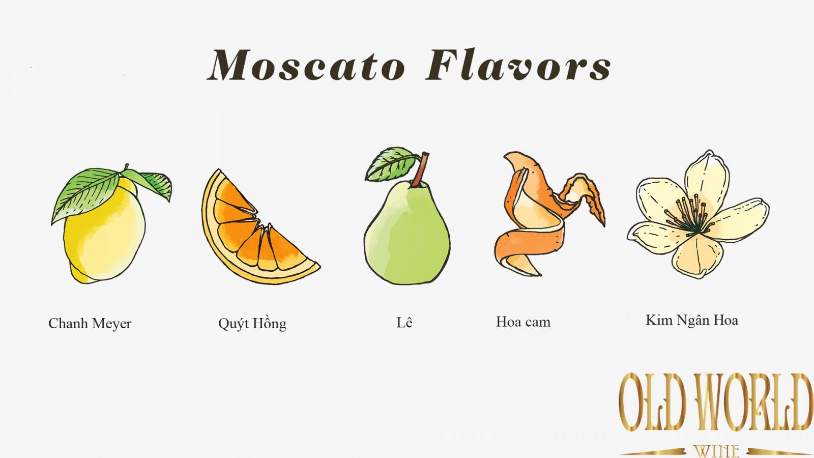 Hương vị Moscato