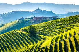 Khí hậu và địa lý Tuscany Vườn nho xung quanh Siena . Các khu vực của Tuscany bao gồm bảy hòn đảo ven biển và là khu vực lớn thứ năm của Ý. Nó giáp với phía tây bắc của Liguria , phía bắc bởi Emilia-Romagna , Umbria ở phía đông và Lazio ở phía nam. Về phía tây là biển Tyrrhenian mang đến cho khu vực khí hậu địa trung hải ấm áp . Địa hình khá đồi núi (hơn 68% địa hình), tiến dần vào dãy núi Apennine dọc biên giới với Emilia-Romagna. Những ngọn đồi có tác dụng ủ nhiệt vào mùa hè, với nhiều vườn nho được trồng trên độ cao của sườn đồi. Nho Sangaguese hoạt động tốt hơn khi nó có thể nhận được nhiều ánh sáng mặt trời trực tiếp hơn, đó là một lợi ích của nhiều vườn nho trên sườn đồi ở Tuscany. Phần lớn các vườn nho của khu vực được tìm thấy ở độ cao 500 dặm 1600 feet (150 .500 mét). Độ cao cao hơn cũng làm tăng sự thay đổi nhiệt độ ngày đêm , giúp nho duy trì sự cân bằng của đường và độ axit cũng như chất lượng thơm của chúng.