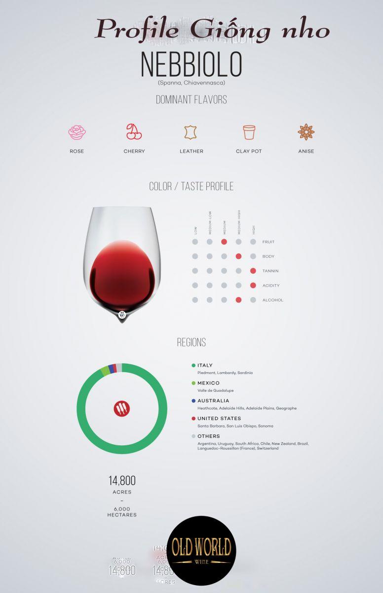 Hướng dẫn về rượu Nebbiolo
