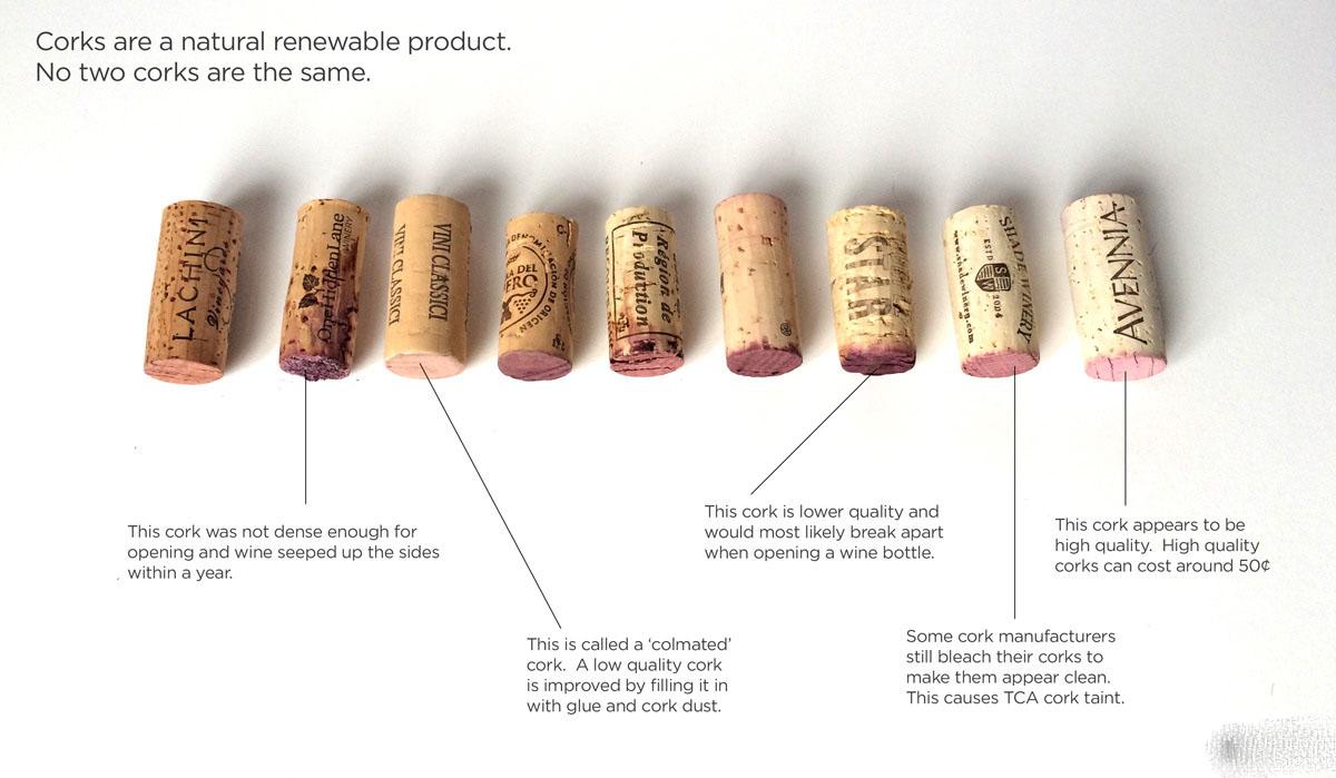 Sự ảnh hưởng của nút bần đến việc lưu trữ rượu vang