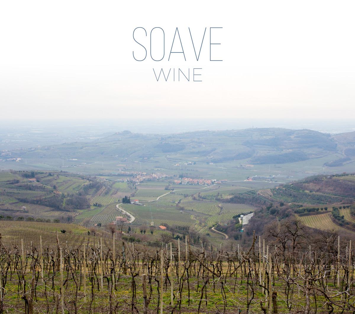 Vùng rượu vang Soave
