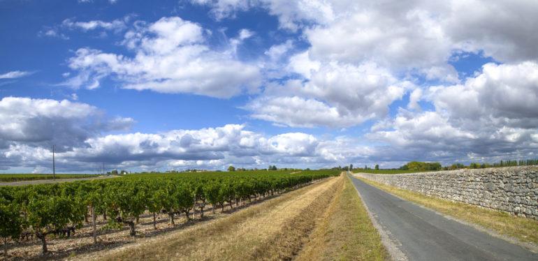 Rượu vang Bordeaux là gì? Tìm hiểu chi tiết về rượu vang Bordeaux