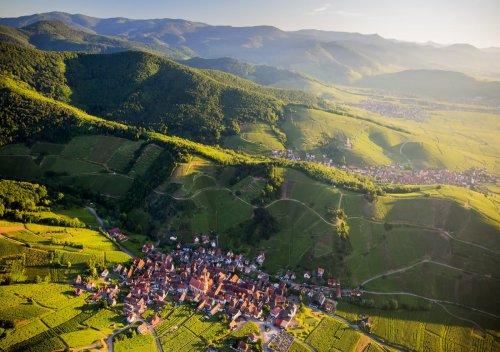 Rượu vang Alsace là gì? Hướng dẫn về rượu vang Alsace