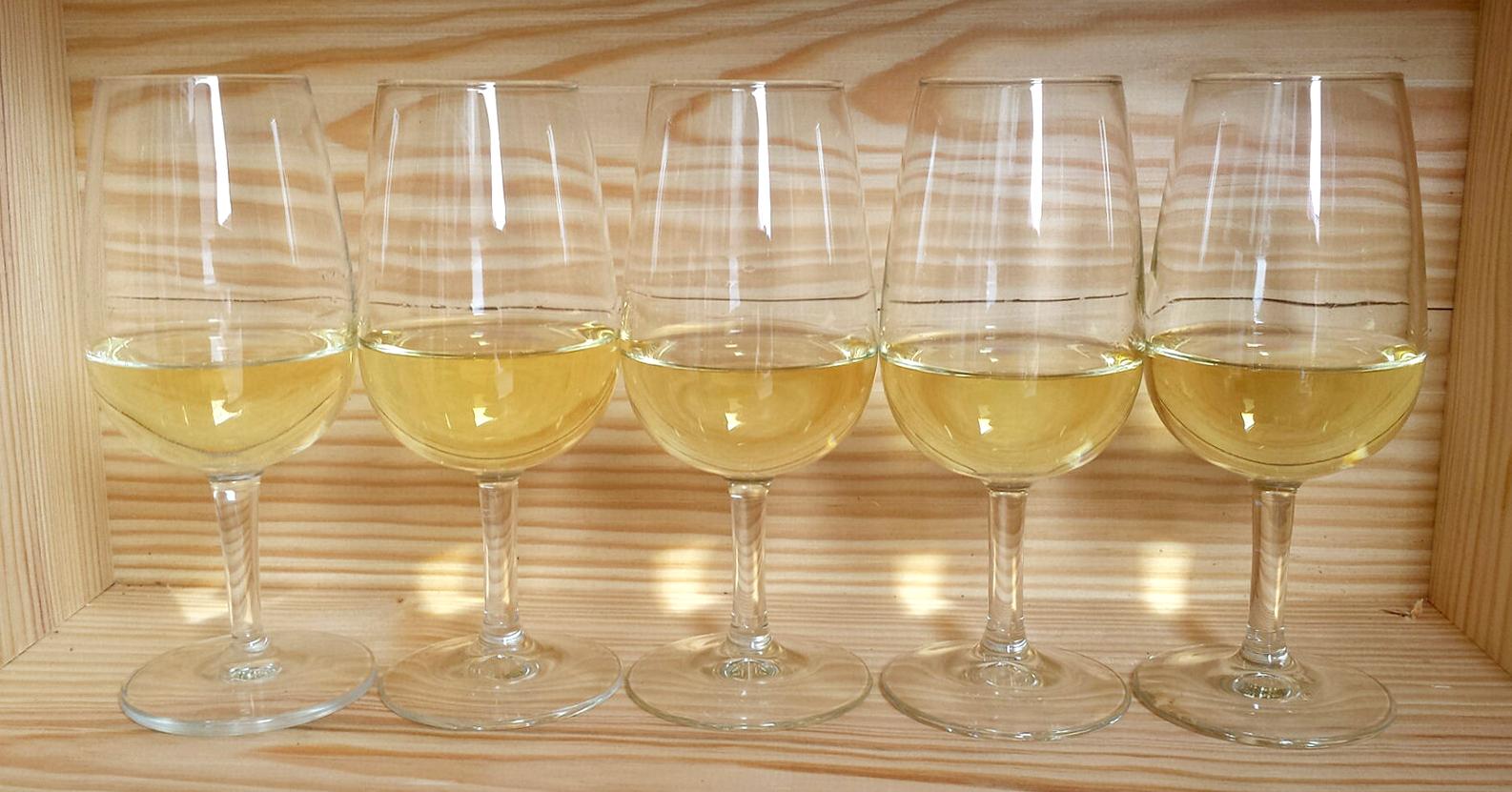 Rượu vang Chablis là gì? Hướng dẫn về rượu vang Chablis