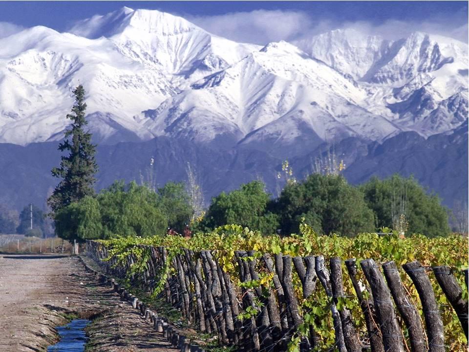 Thung lũng Cachapoal - Rượu vang Chile