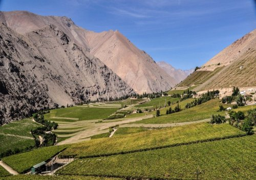Khám phá vùng rượu vang Thung lũng Elqui của Chile