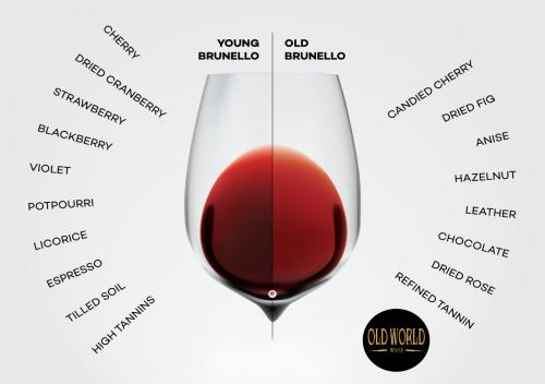 Brunello di Montalcino là gì? Tìm hiểu rượu vang Brunello di Montalcino